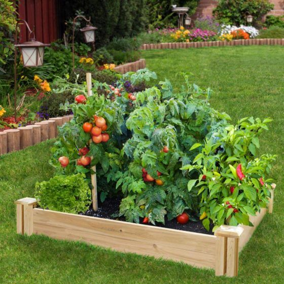 home depot gardening article may 2017 Raised garden bed