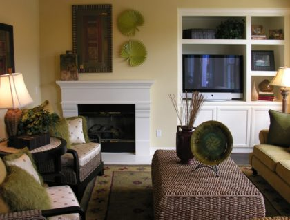 Living Room Fireplace and Bookcase