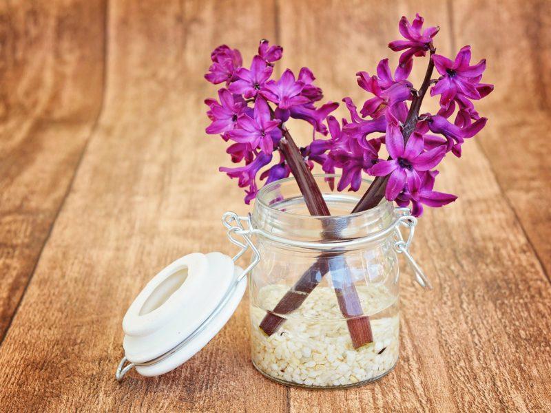 flower, vase
