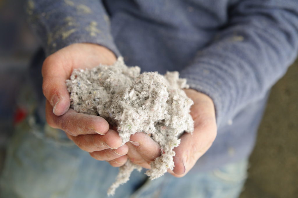 Hands holding loose cellulose insulation