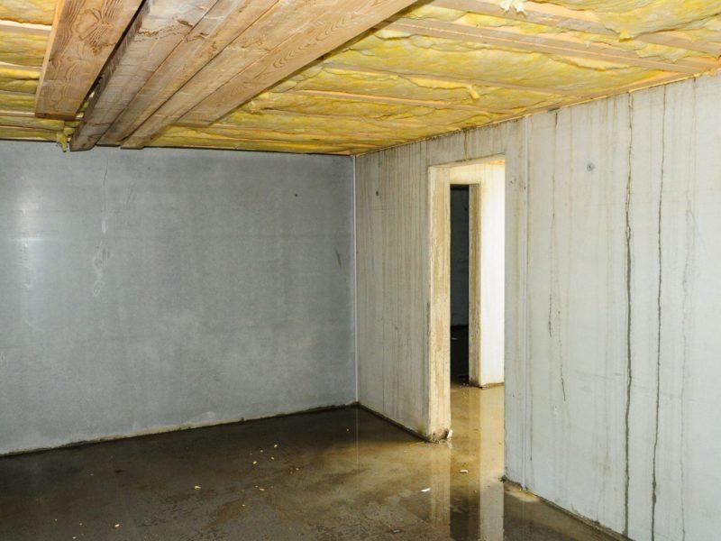 Basement with a wet floor