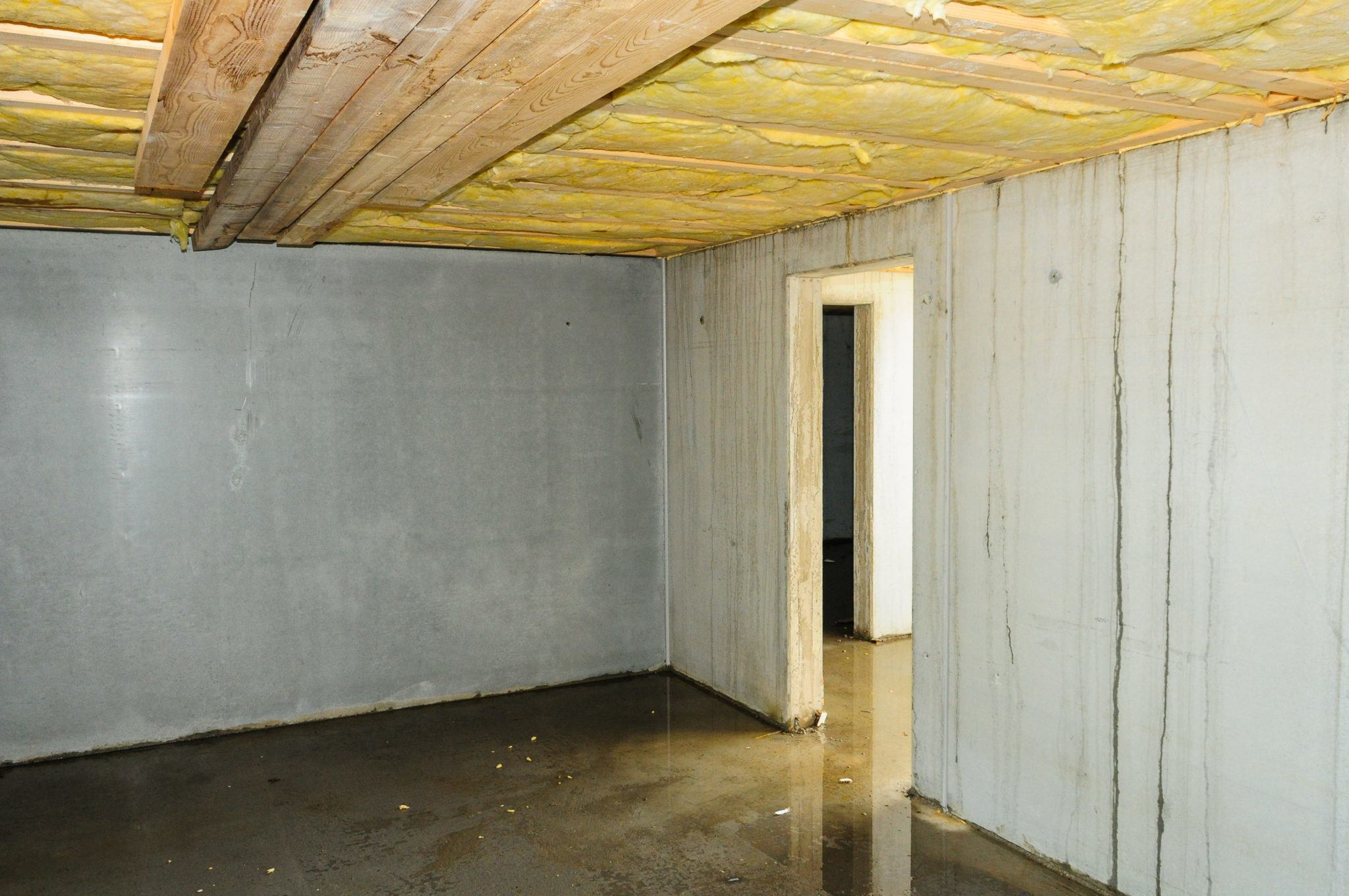 Basement Construction Ideas To Strengthen Your Basement Basement with a wet floor