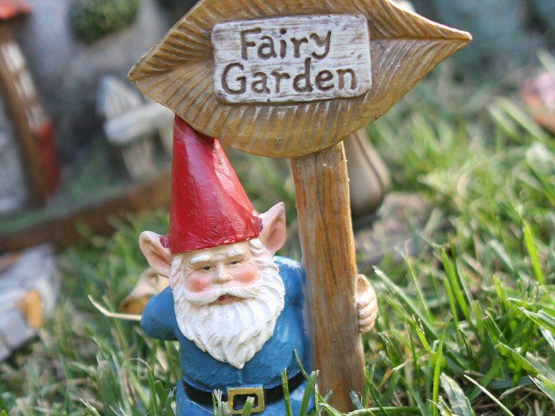 fairy garden, enchanted garden, gnome garden