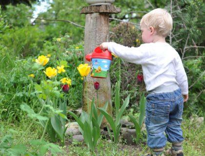 Kids, Garden