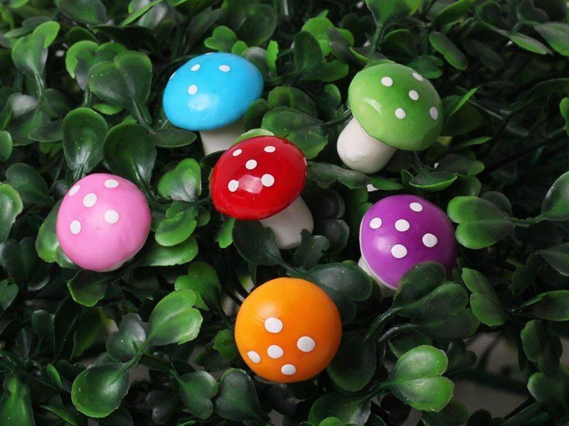 reduce mushroom growth