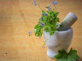 Grinding herbs