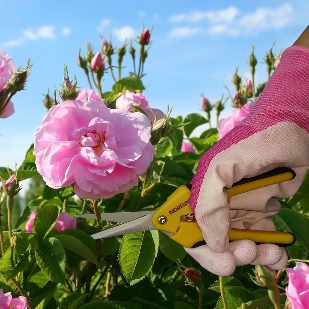 garden, tools
