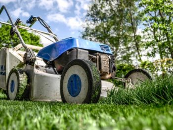 lawn disease, lawn mower