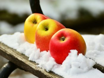 winterize garden, prepare your garden for winter