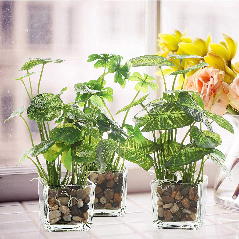 Artificial, fake, plants in clear glass pots near window