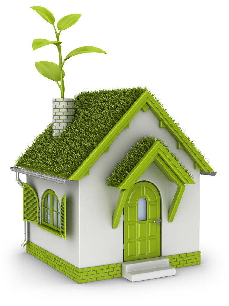 Eco house with grass roof and plant in chimney