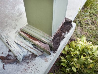 Wood post damaged by termites