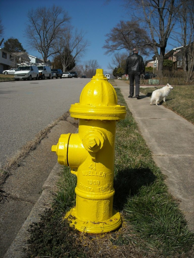 Fire hydrant in front of houses