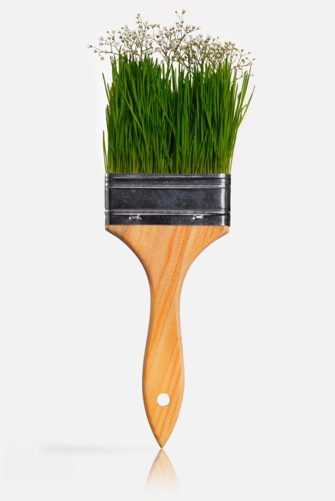Paint brush with grass as the bristles