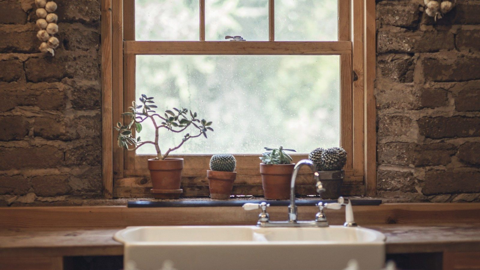 Farmhouse window with plants on sill
