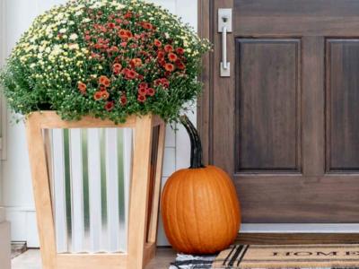 Planter on a porch