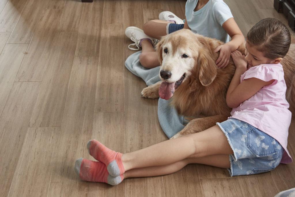 KIds and dog on LL Flooring Engineered Bamboo floor